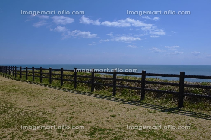 崖の上からの太平洋と白雲浮かぶ空の販売画像