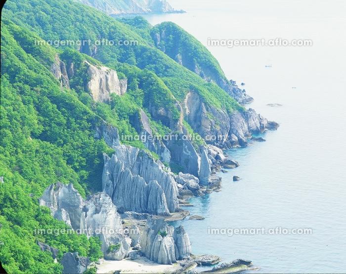 海と崖の販売画像