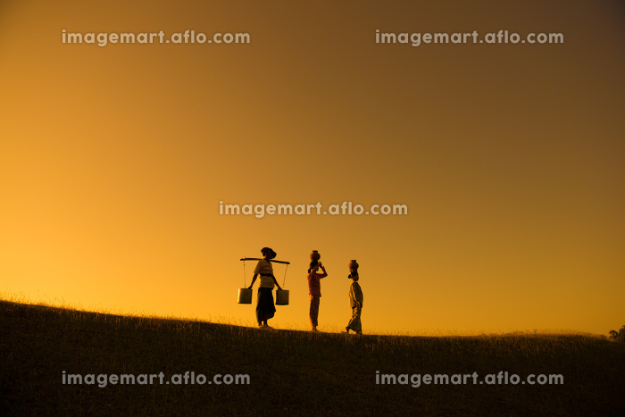 Silhouette of group Asian traditional farmersの販売画像