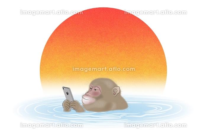 スマートフォンを持って温泉に入るサル イラストの販売画像