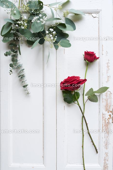 Flower decoration on white wooden backgroundの販売画像