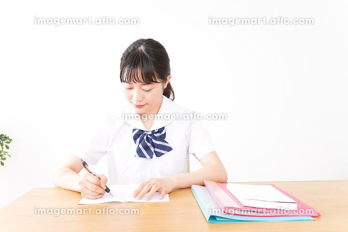 勉強をする若い女子学生の販売画像