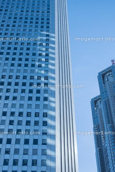 東京都 西新宿高層ビルと東京都庁ビルの販売画像