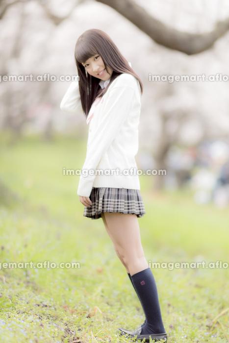 桜の木の下に立つ女子高生
