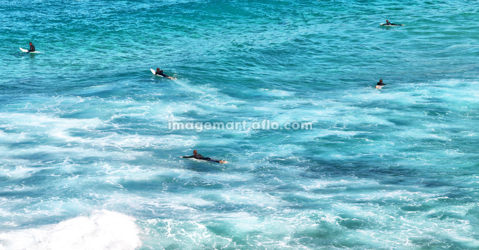 in  australia  sydney people in the ocean surf and sport