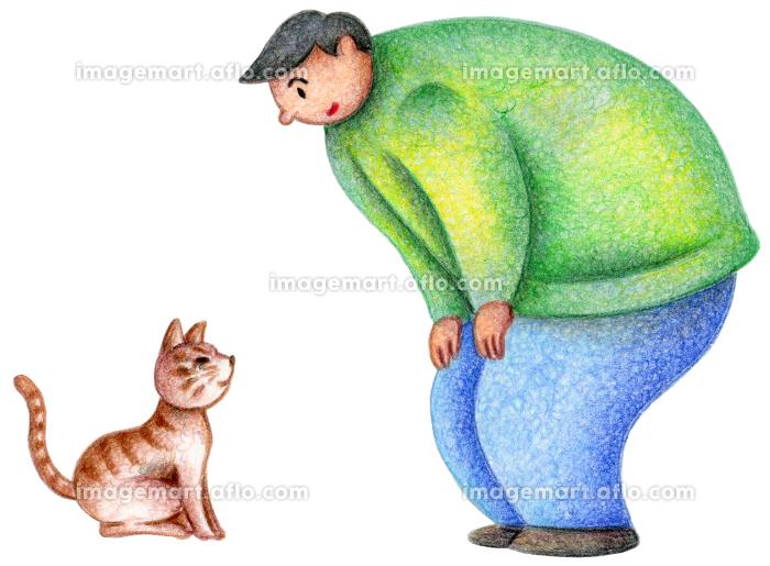 野良猫と男性の販売画像