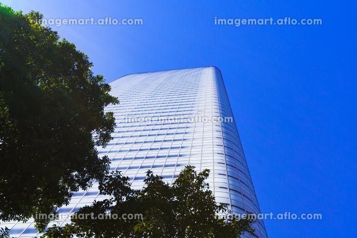 電通 電通本社ビルの外観 【東京都の都市風景】の販売画像