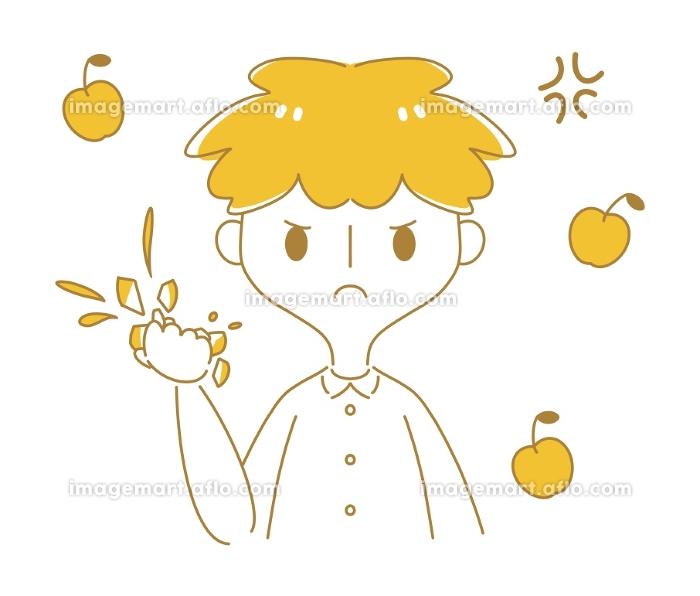 怒りでりんごを握り潰すの販売画像
