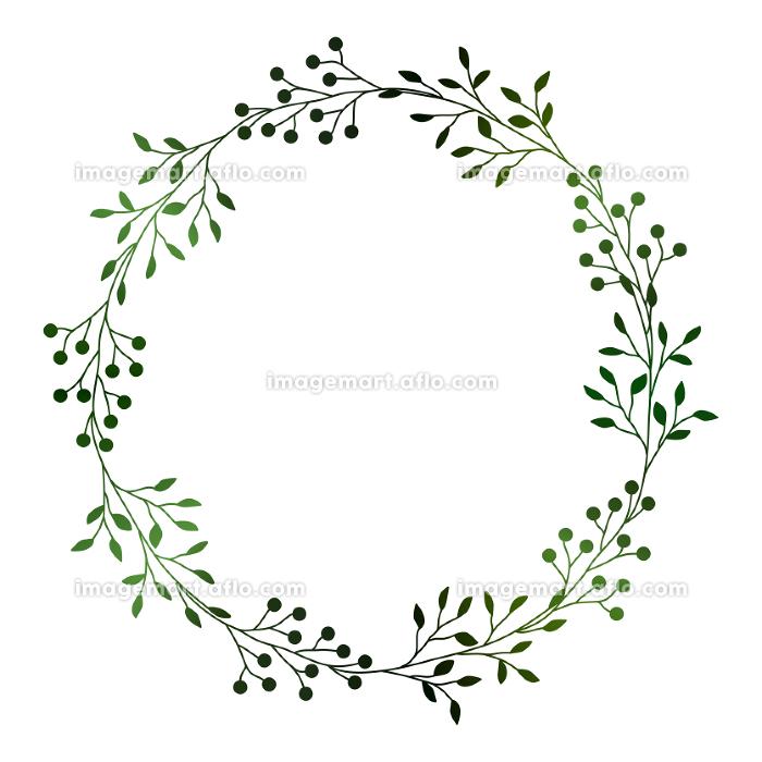 緑の小枝と実のフレームイラスト 1の販売画像