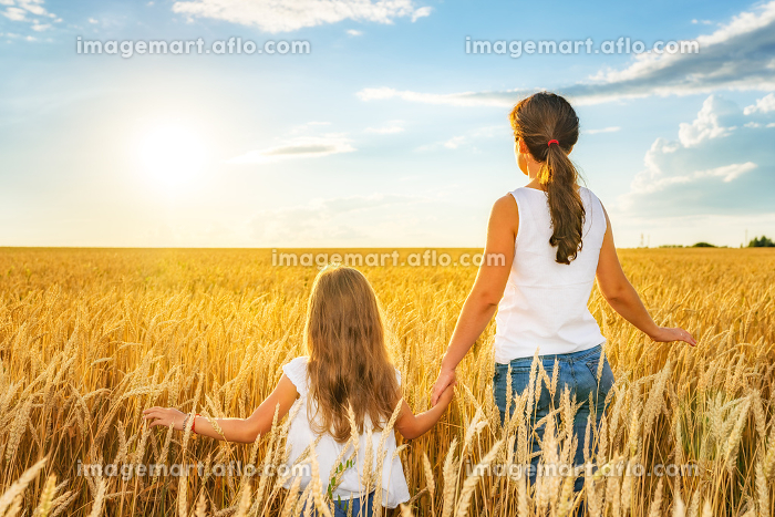 Young woman and her daughter walking on golden wheat field at sunny day.