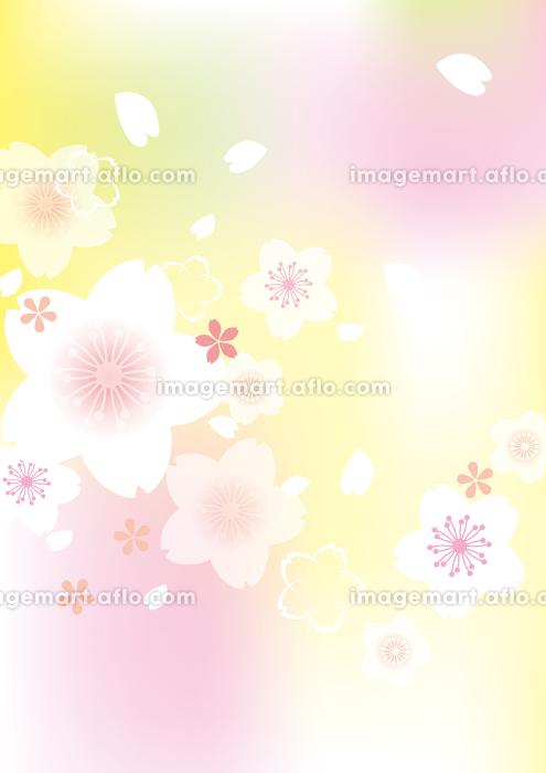 優しい桜イラスト イメージマート