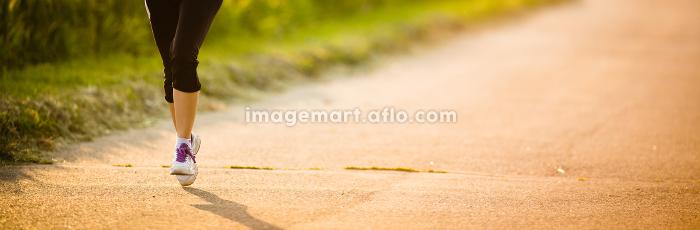 公園 リラックス ジョギングの販売画像