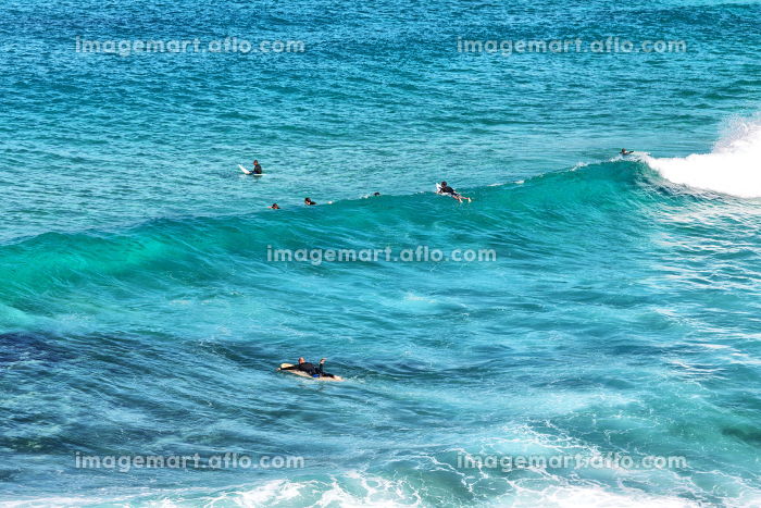 in  australia  sydney people in the ocean surf and sportの販売画像