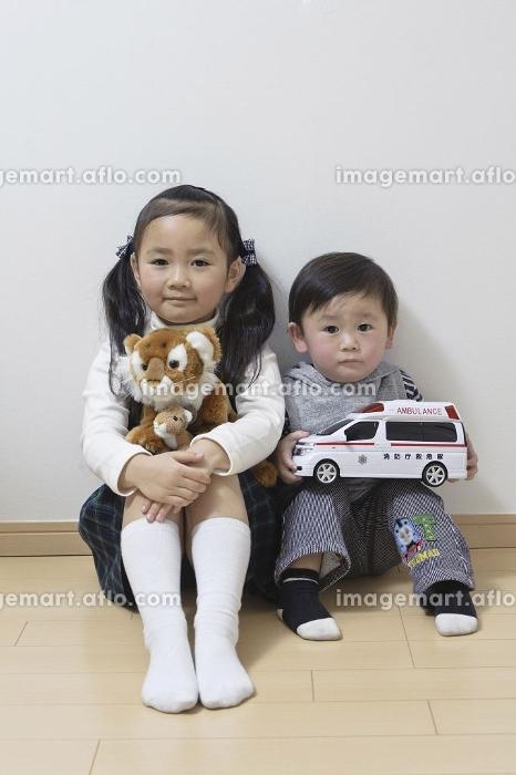 姉弟で仲良くおもちゃを持ってお座りの販売画像