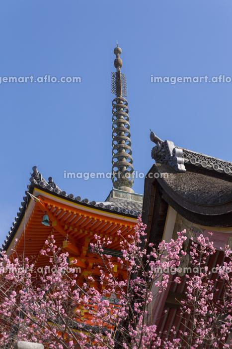 清水寺三重塔と西門の販売画像