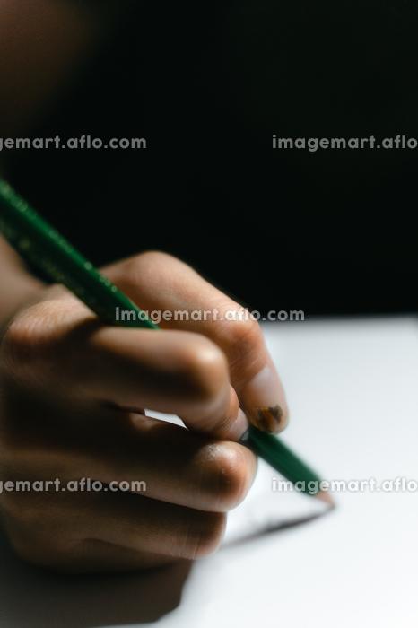 鉛筆を走らせるの販売画像