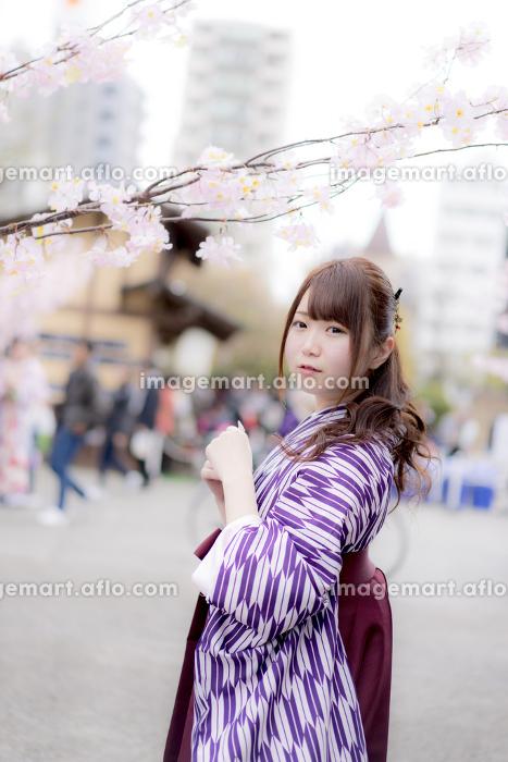 桜の前で振り返る袴の女性