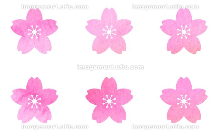 桜の花のアイコンセット 水彩テクスチャによるベクター素材の販売画像