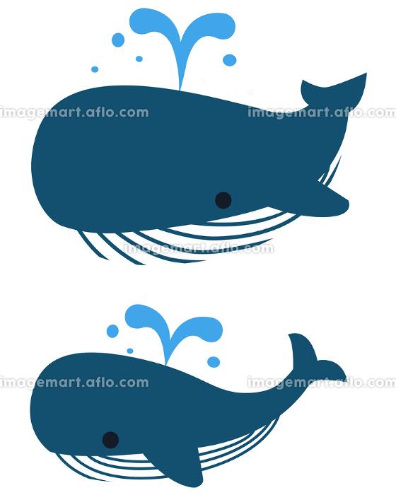 イラスト素材 クジラ 潮吹き ベクターの販売画像