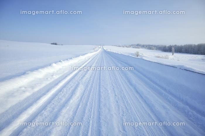 雪道の販売画像