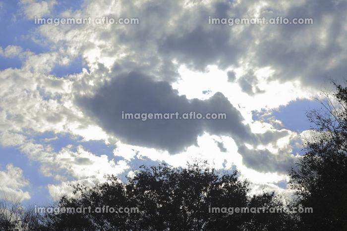 逆光の雲の販売画像