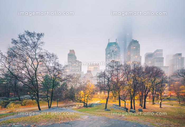 NY Central park at rainy morning