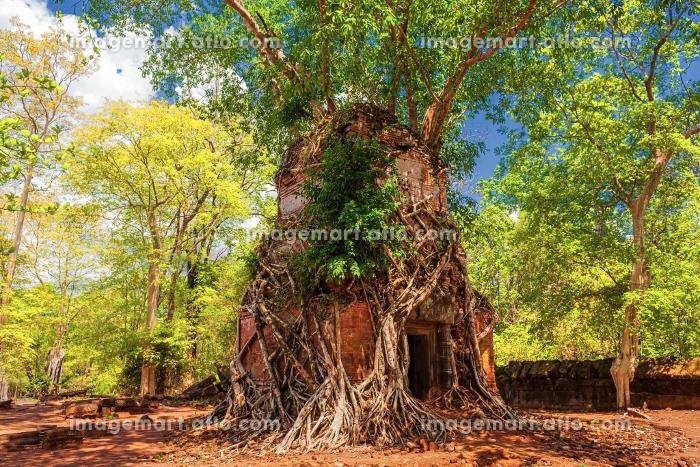 カンボジア・コーケー遺跡群 プラサット・プラムの風景の販売画像