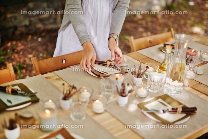 Serving Thanksgiving tableの販売画像