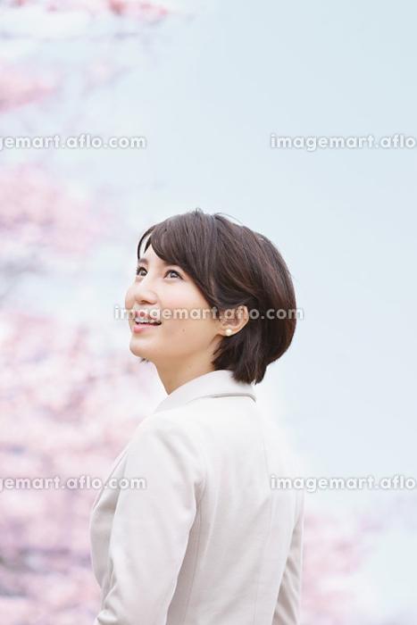 桜とスーツを着た日本人女性の販売画像