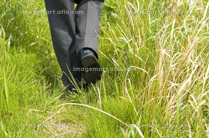 草むらを歩く男子高校生の足元の販売画像
