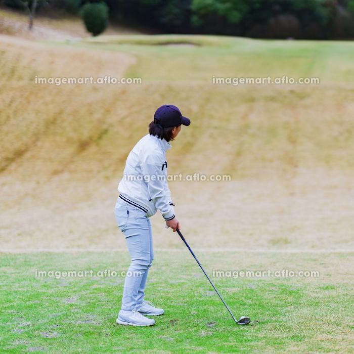 ゴルファー ゴルフ ラウンド スイング ゴルフ場の販売画像