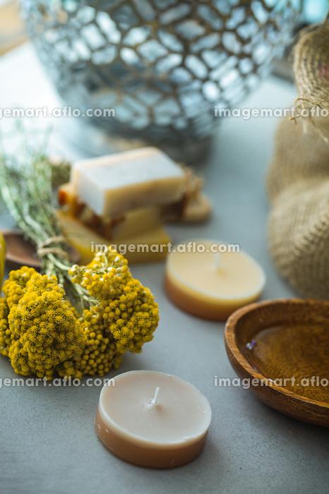 Spa natural conceptの販売画像