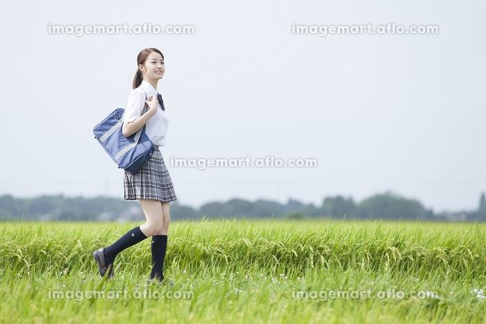 あぜ道を歩く女子高校生の販売画像