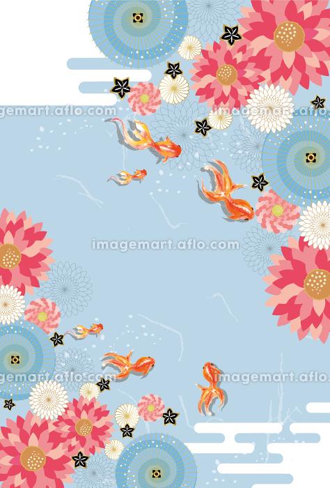 金魚:金魚 金魚すくい 泳ぐ お祭り おしゃれ 和 淡水魚 和風 アクアリウムの販売画像