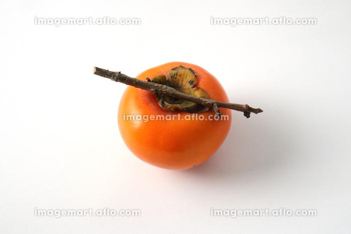 枝付きの柿 2 白背景の販売画像