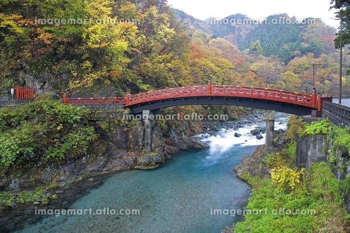 秋の神橋の販売画像