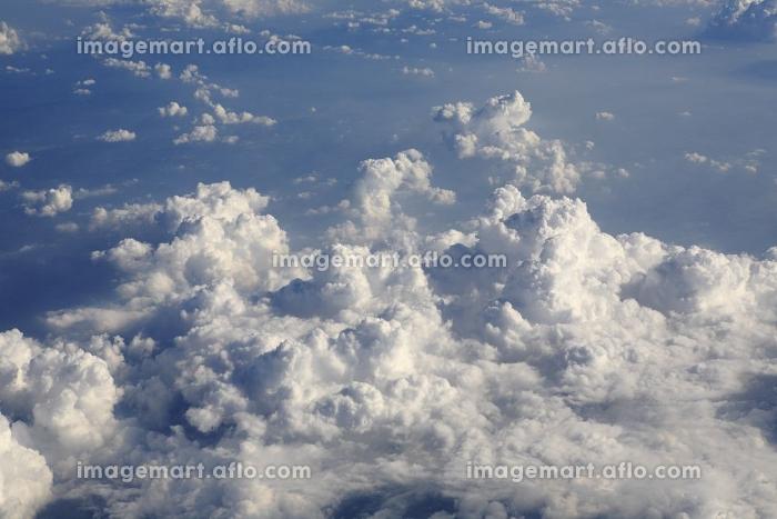 雲海の販売画像