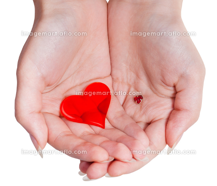two red hearts in female handful isolatedの販売画像