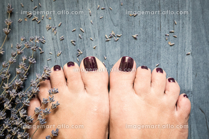Closeup photo of a female feet with pedicure on nails and lavender. at spa salon. Legs care conceptの販売画像