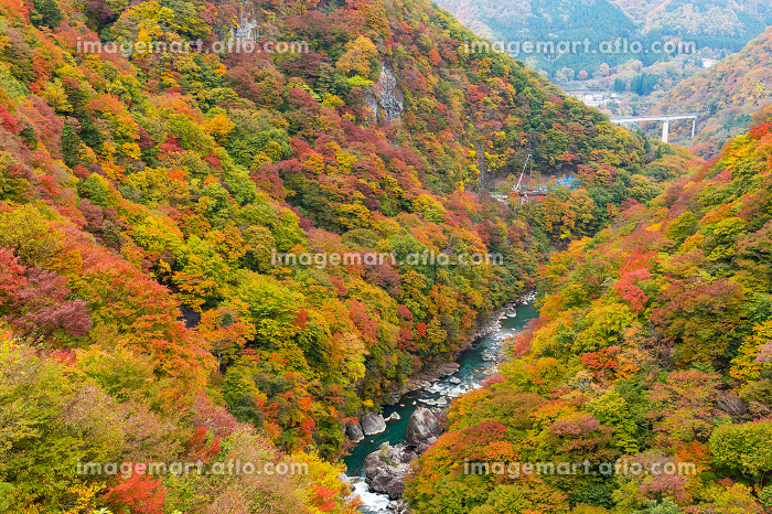 Autumn landscape in kinugawaの販売画像