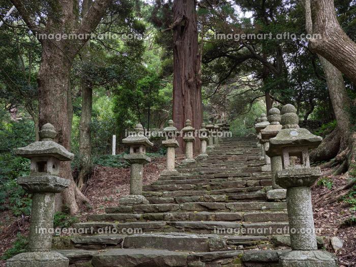 対馬 秋の万松院の参道の階段と石灯籠の風景 10月の販売画像