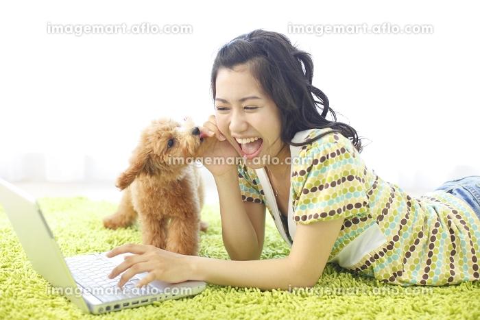 リビングで寝そべりパソコンをする若い女の子とトイプードル