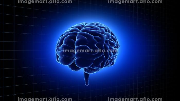 脳 頭脳 ブレイン 頭 あたま ヘッド 医療 科学 3Dイラスト CG 背景の販売画像