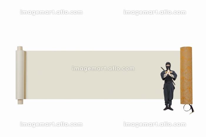 忍者の販売画像