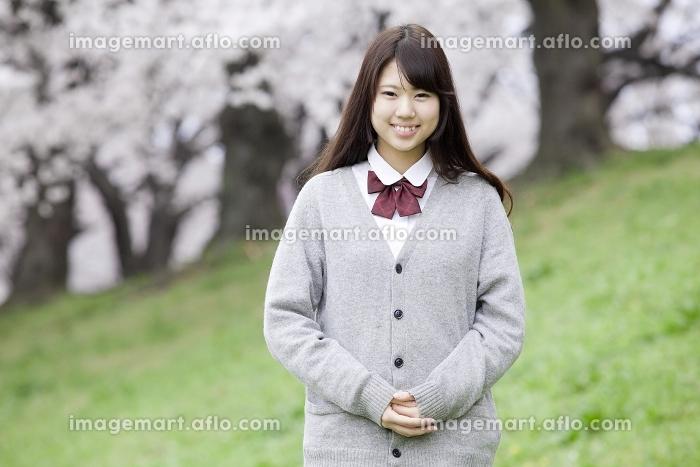 桜の木の前で立つ女子高生の販売画像