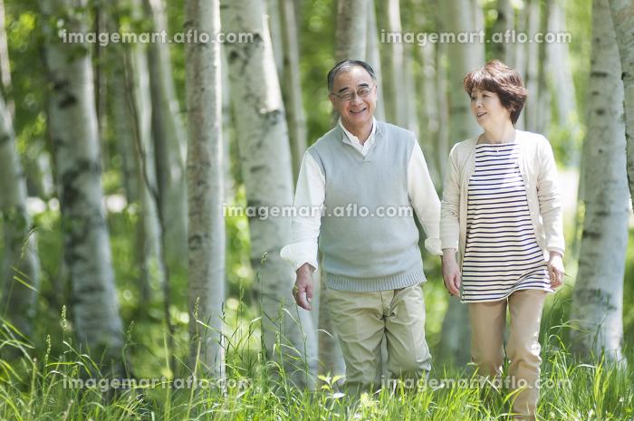 森林の中を歩くシニア夫婦の販売画像
