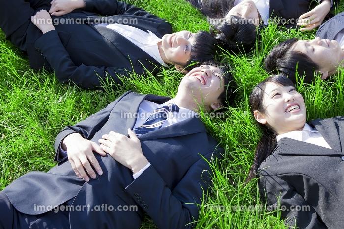 芝に寝転がる新社会人