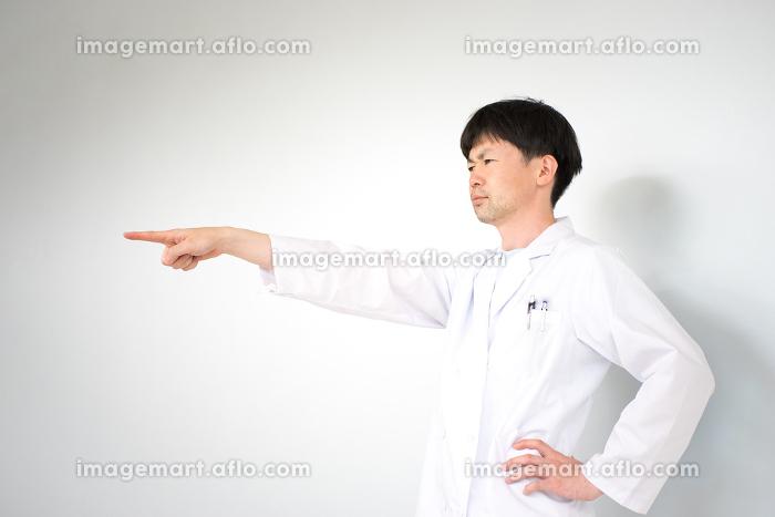 白衣の男性(医療・研究イメージ・白バック)の販売画像