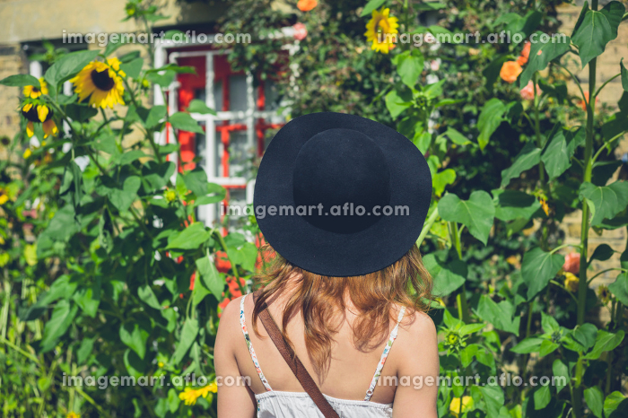 A young woman wearing a hat and a dress is admiring some sunflowers outside a house on a sunny day in summerの販売画像
