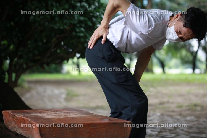腰に痛みを感じる男性の販売画像